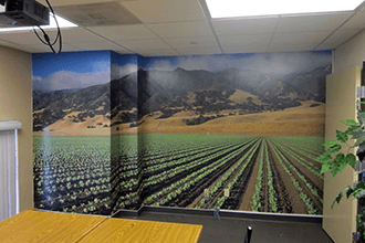 We can install office wall murals on pretty much any surface