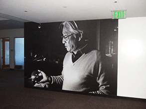 This Sony wall mural has striking, photo-quality results